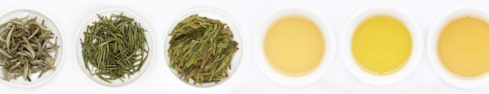 green-tea-cat
